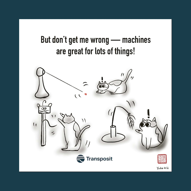 But don't get me wrong -- machines are great for lots of things! Pictures of laser pointer and other automated cat toys